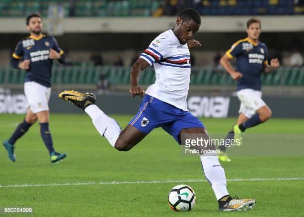 Duvan Zapata of UC Sampdoria kicks the ball during the Serie A match between Hellas Verona FC and UC Sampdoria at Stadio Marc'Antonio Bentegodi on...