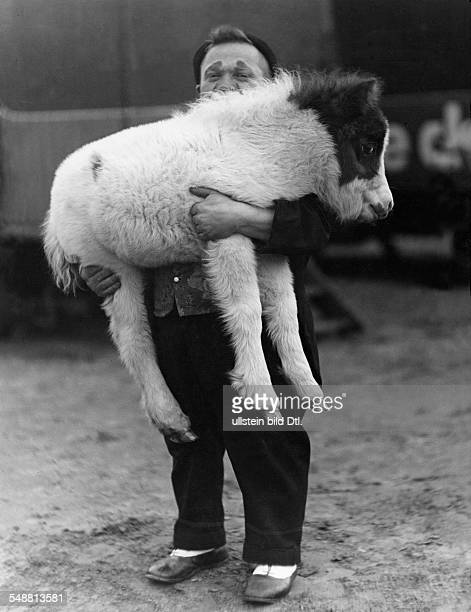 Dwarf clown with a Shetland pony foal 1931 Photographer Hedda Walther Published by 'Die Gruene Post' 06/1931 Vintage property of ullstein bild