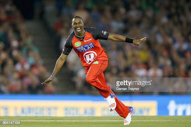Dwayne Bravo of the Melbourne Renegades celebrates taking the wicket of Marcus Stoinis of the Melbourne Stars during the Big Bash League match...