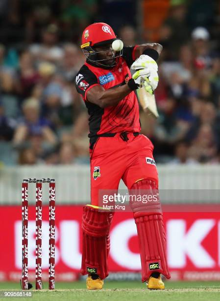 Dwayne Bravo of the Renegades bats during the Big Bash League match between the Sydney Thunder and the Melbourne Renegades at Manuka Oval on January...