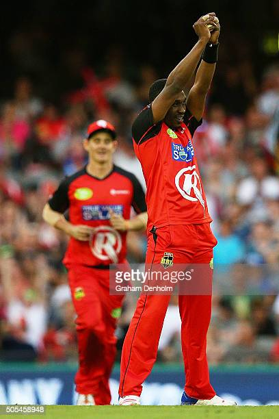 Dwayne Bravo of the Renegades celebrates taking a catch to dismiss Jono Dean of the Strikers during the Big Bash League match between the Melbourne...