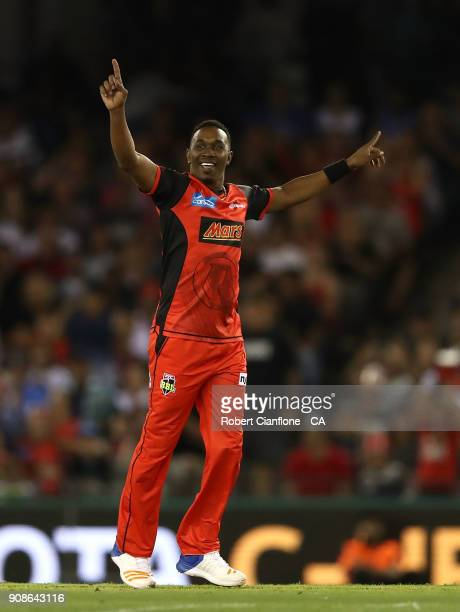 Dwayne Bravo of the Renegades celebrates the wicket of Jake Lehmann of the Strikers during the Big Bash League match between the Melbourne Renegades...
