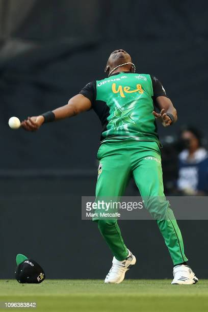 Dwayne Bravo of the Stars celebrates taking a catch to dismiss Marcus Harris of the Renegades during the Big Bash League match between the Melbourne...