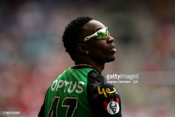 Dwayne Bravo of the Stars looks on during the Big Bash League Final match between the Melbourne Renegades and the Melbourne Stars at Marvel Stadium...