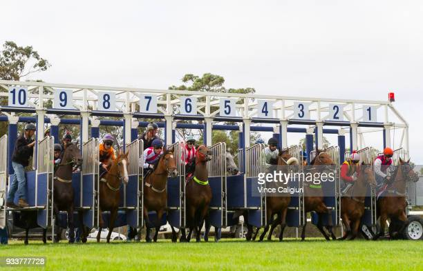 Dwayne Dunn riding champion sprinter Chautauqua refuses to jump in barrier five during Cranbourne Barrier Trials on March 19 2018 in Melbourne...