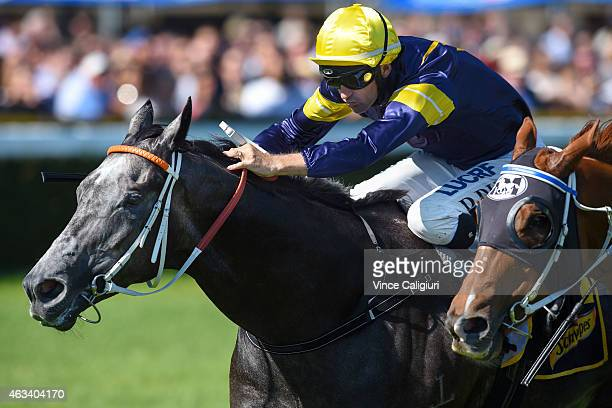 Dwayne Dunn riding Chautauqua defeats Chad Schofield riding Flamberge to win Race 6 the Schweppes Rubiton Stakes during Melbourne Racing at Caulfield...