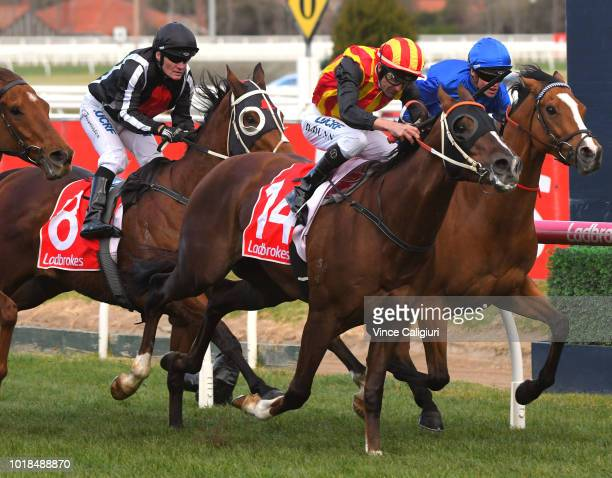 Dwayne Dunn riding Showtime defeats Craig Williams riding Hartnell in Race 7 Sir John Monash PBLawrence Stakes during PBLawrence Stakes Day at...