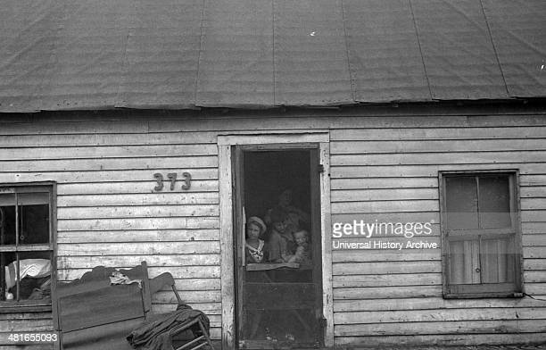 Dweller in Circleville's Hooverville central Ohio 1938 Summer