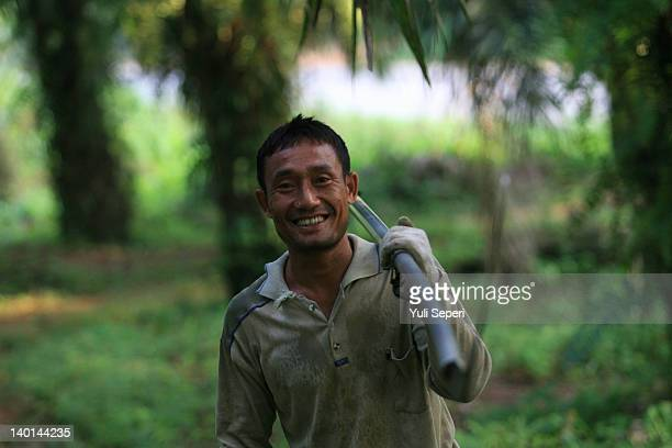 "Dwi Farmer carries an ""Ancak"" on the oil palm plantations on February 28, 2012 in Bintan Island, Indonesia. Indonesian palm oil producers have been..."