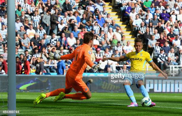 Dwight Gayle of Crystal Palace scores the opening goal past Tim Krul of Newcastle United during the Barclays Premier League match between Newcastle...