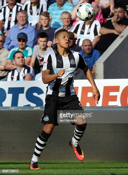 Dwight Gayle of Newcastle after during the Sky Bet Championship match between Newcastle United and Wolverhampton Wanders at St James' Park on...