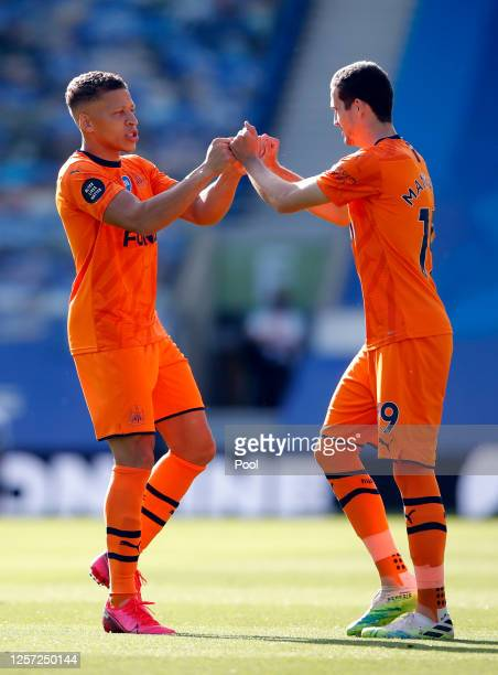 Dwight Gayle of Newcastle United and Javier Manquillo of Newcastle United interact prior to the Premier League match between Brighton Hove Albion and...