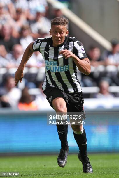 Dwight Gayle of Newcastle United during the Premier League match between Newcastle United and Tottenham Hotspur at St James Park on August 13 2017 in...