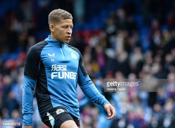 Dwight Gayle of Newcastle United FC during the Premier League match between Crystal Palace and Newcastle United at Selhurst Park on October 23, 2021...
