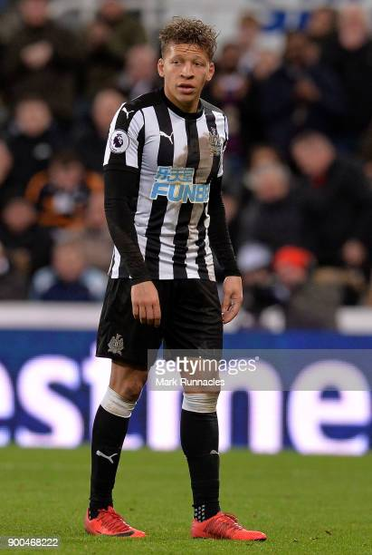 Dwight Gayle of Newcastle United in action during the Premier League match between Newcastle United and Brighton and Hove Albion at St James Park on...