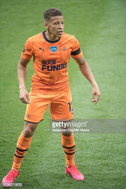 Dwight Gayle of Newcastle United looks on during the Premier League match between Watford FC and Newcastle United at Vicarage Road on July 11 2020 in...