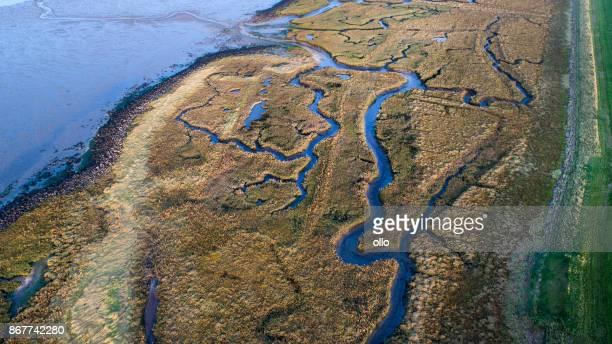 Dyke, salt marsh and coastline - aerial view