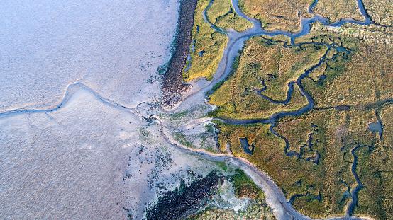 Dyke, salt marsh and coastline - aerial view 867742386