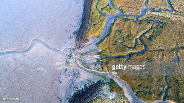 dyke, salt marsh and coastline - aerial view - ecosystem stock pictures, royalty-free photos & images