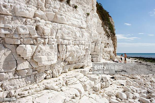 Dykes End: chalk beach at base of Danes Dyke near Flamborough, East Yorkshire, England, UK