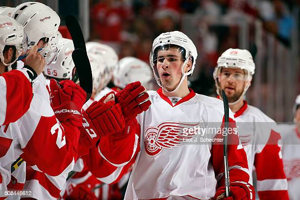 Dylan Larkin celebrates his goal with teammates during the first period against the Florida Panthers at the BBT Center on February 4 2016 in Sunrise...