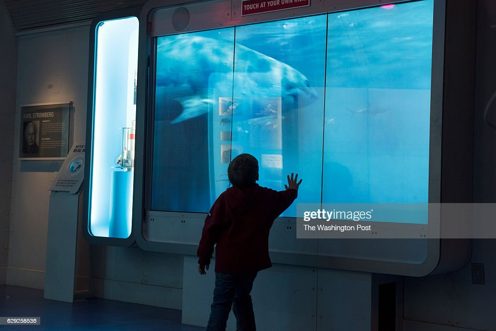 Autism Access Day at the International Spy Museum : Foto jornalística