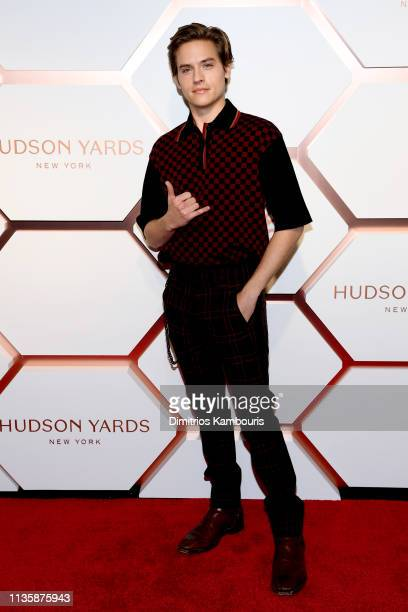 Dylan Sprouse attends The Shops Restaurants at Hudson Yards Preview Celebration – Red Carpet Arrivals on March 14 2019 in New York City