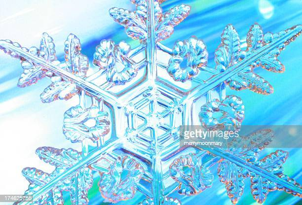 dynamic snowflake - snowflakes stock photos and pictures