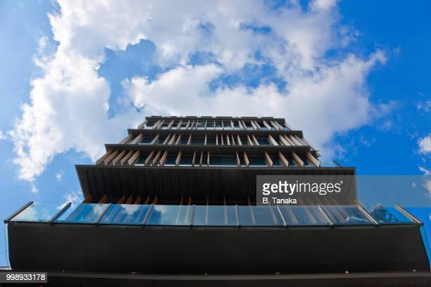 Dynamic View of Tourist Information Center in the Downtown Asakusa District of Tokyo, Japan
