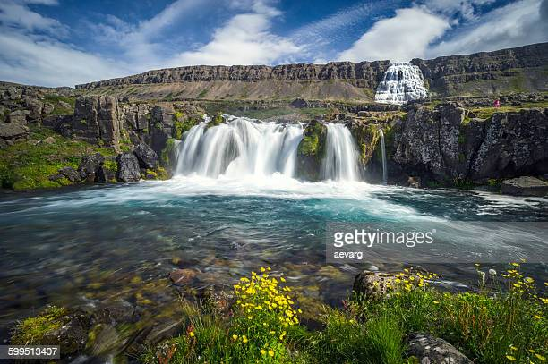 dynjandi waterfall in iceland - westfjords iceland stock photos and pictures