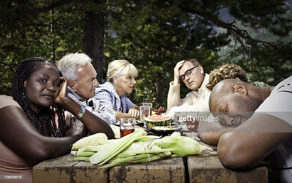 Dysfunctional Family Picnic : Stock Photo