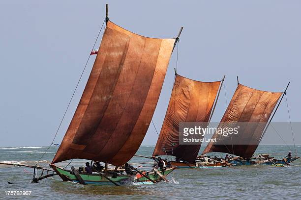 Each day, fishermen take their oruvas, and go out in search of the fish for which Negombo is well known.