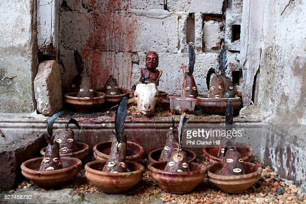 Each of the clay statues is an 'Ellegua' Adherents of the practice first have to receive Ellegua and he is the Orisha that is always summonded first...
