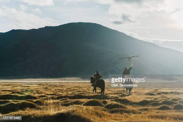 モンゴルの草原でイーグルハンター - モンゴル ストックフォトと画像