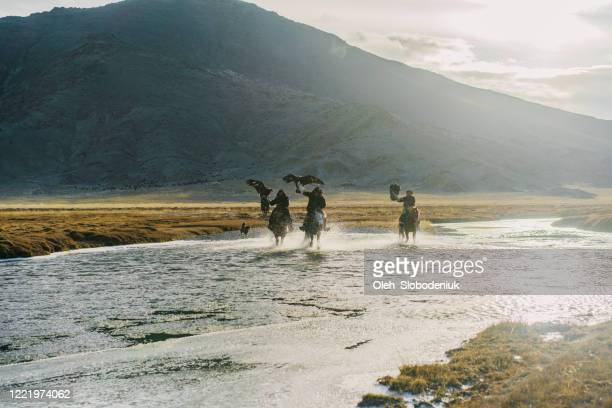 eagle hunters riding through  the river in mongolia - independent mongolia stock pictures, royalty-free photos & images