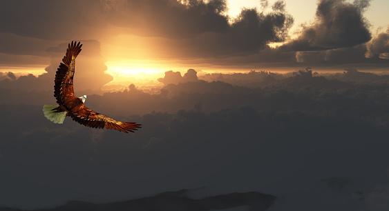 Eagle in Flight Above Dramatic Cloudscape 1074209126