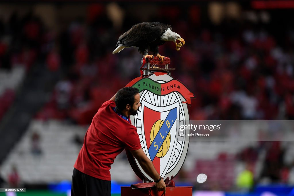 SL Benfica v FC Bayern Muenchen - UEFA Champions League Group E : ニュース写真