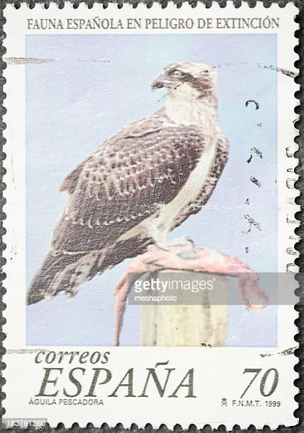 eagle selo postal - marca postal - fotografias e filmes do acervo