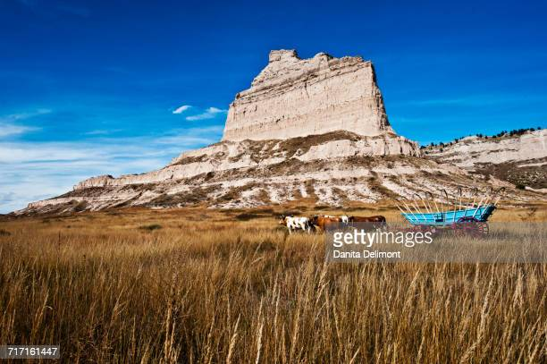 Eagle Rock with Replica Covered Wagon and Oxen, Scotts Bluff National Monument, Scotts Bluff, Nebraska, USA