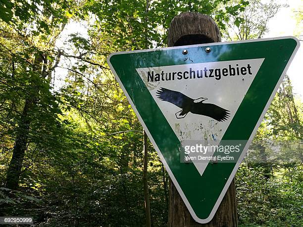 Eagle Sign By Trees In Forest