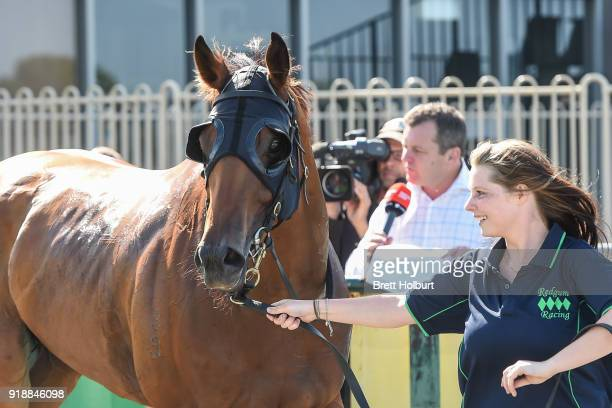 Eagle Spirit after winning the Werribee Car Wash BM58 Handicap at Werribee Racecourse on February 16 2018 in Werribee Australia