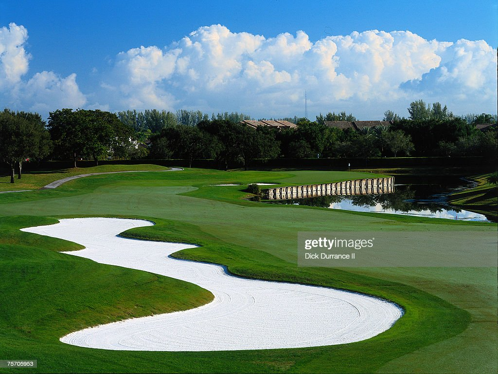 PGA TOUR - 2000 TPC Eagle Trace : News Photo