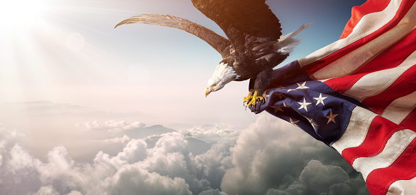 Eagle With American Flag Flies In Freedom 1149339136