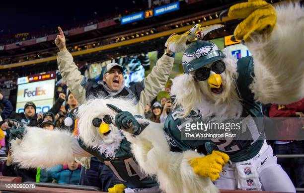 Eagles fans celebrate an Eagles touchdown in the second quarter during a game between the Washington Redskins and the Philadelphia Eagles at FedEx...