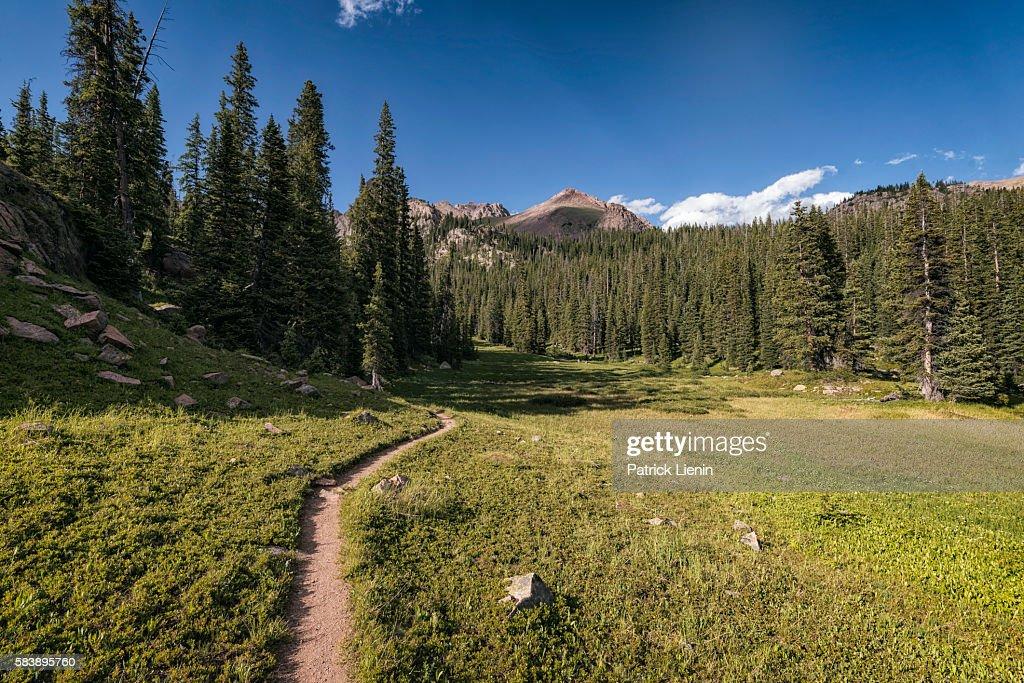 Eagles Nest Wilderness, Colorado : Stock Photo