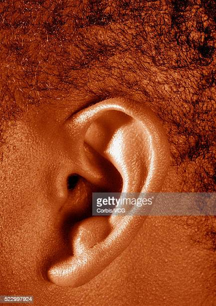 ear - earlobe stock photos and pictures