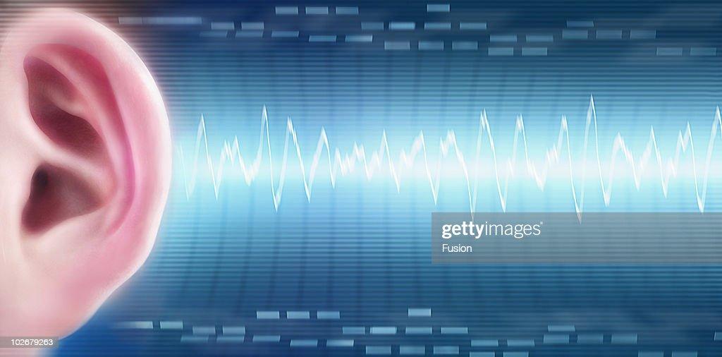 Ear with soundwave : Bildbanksbilder