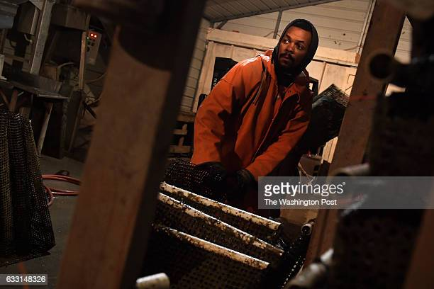 Earl Davenport arranges the bags that grow the oysters well before sunrise January 25 2017 in White Stone VA The company grows its own oysters using...