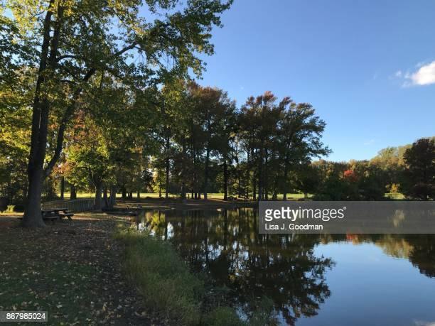 early fall foliage in bellevue state park - wilmington delaware stock-fotos und bilder