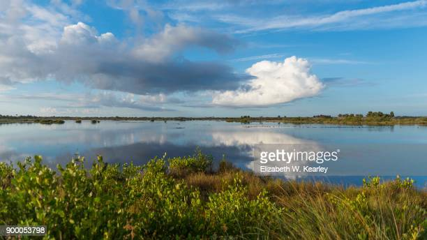 early morning at merritt island - titusville florida stock pictures, royalty-free photos & images